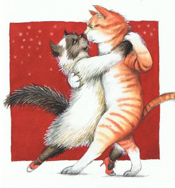En kat kan ikke danse tango, 2010